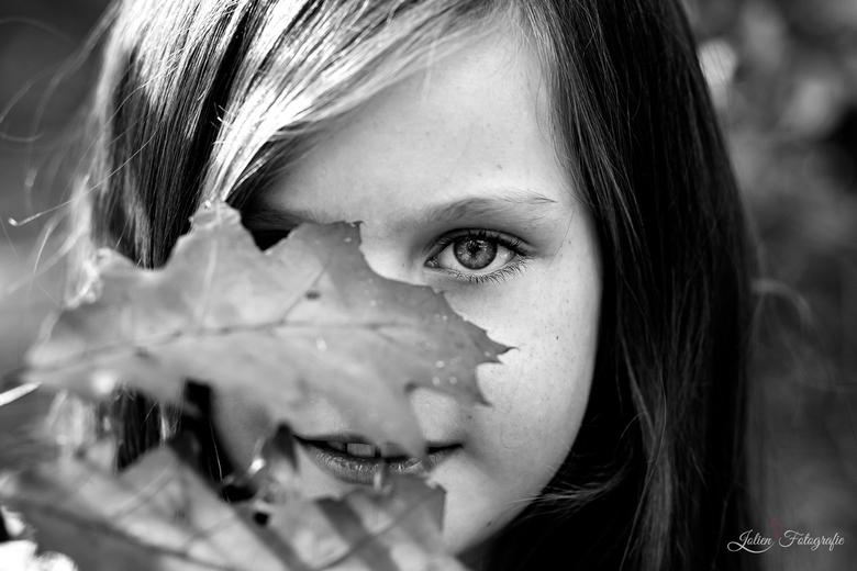 het meisje met herfstblad -
