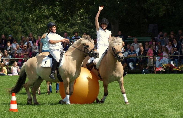 GOAL - Dag van mens en dier.<br /> Genoten van het paardenvoetbal verzorgd door het Fjordenpaardenstamboek.<br /> Zuid- tegen Noord-Holland. Noord-H