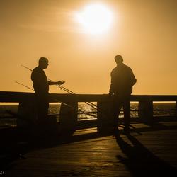 vissers nieuwpoort