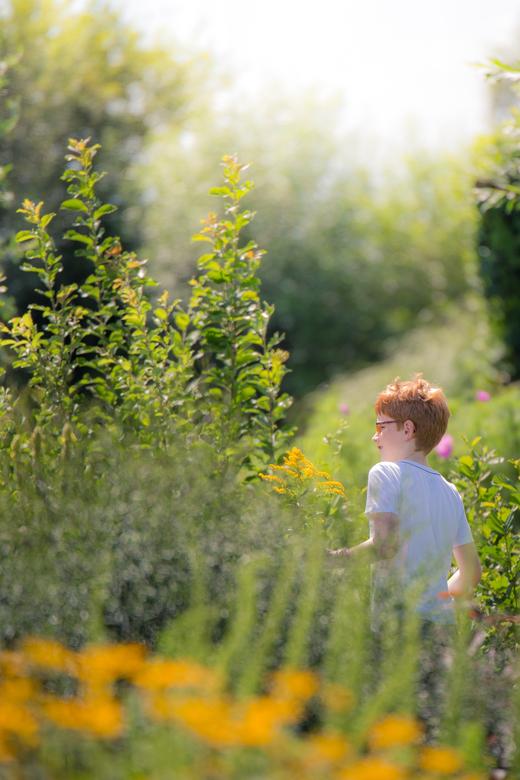 Jongetje in de bloemenpluktuin