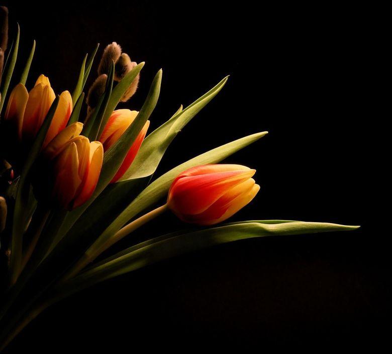...simpel bloemetje... - .....bloemetje voor...... wie het mooi vindt!...