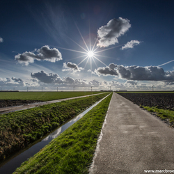 Sunburst Flevoland