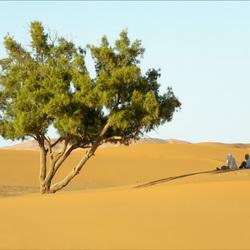 south morokko dunes