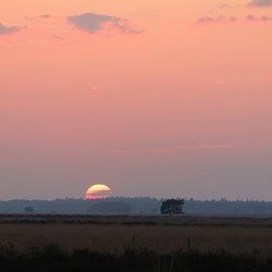 Sunset Dwingelderveld
