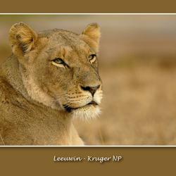 Leeuwin Kruger NP
