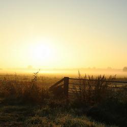 Boerenhek in de ochtend mist