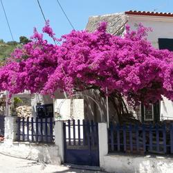 Schitterende kleuren in Griekenland