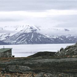 Rijpsburg(spitsbergen)