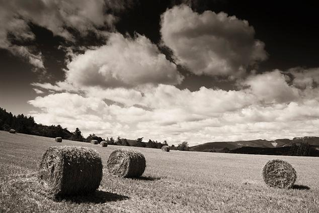 Strobalen in het veld - Strobalen liggen op het land te wachten op de boer.<br /> <br /> Dit weiland ligt in Veynes (zuid fankrijk) aan de voet van