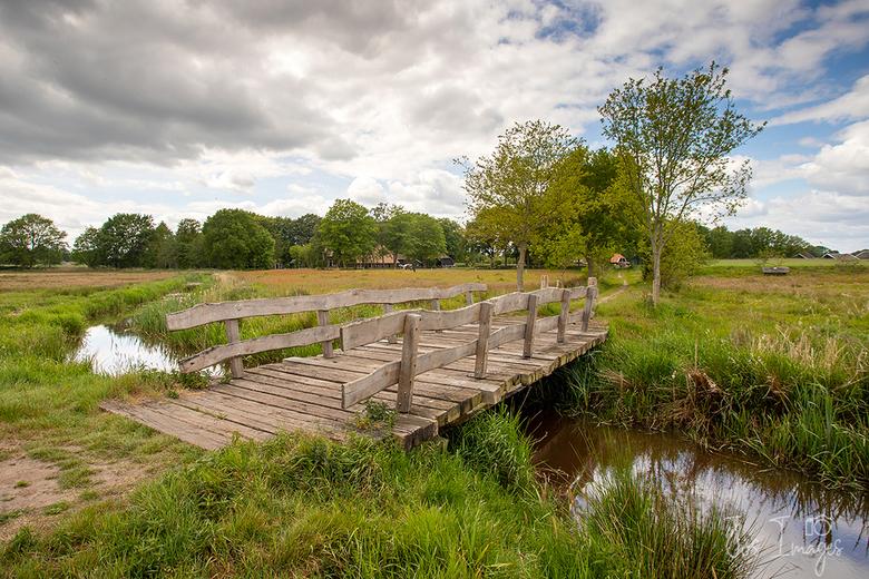 De Reest - Het riviertje de Reest ligt op de grens van de provincies Drenthe en Overijssel en stroomt vanaf Dedemsvaart naar Meppel. De Reest is een t