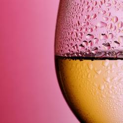 Planet Pinot Blanc