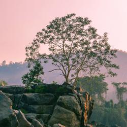 Langs de oevers van de Mekong, Laos