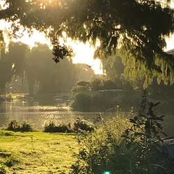 Sunny September Early Mornings 1