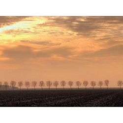 Sunset in de polder