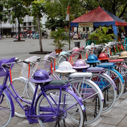 fietsverhuur met hoed