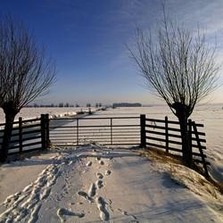 Winterlandschap bij Oud-Alblas.JPG