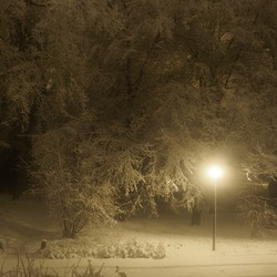 Stille winternacht