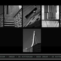 Rotterdam Before & After 1