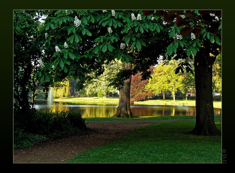 Morgenlicht - Wilhelminapark Meppel 2008<br /> <br /> En nog een uit dat mooie park. Genomen aan het eind van de ochtend toen de zon zich nog net ni