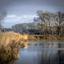 Natuurgebied meijnerswijk Arnhem