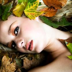 .::Een andere herfst::.