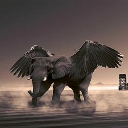 Dombo from Heaven