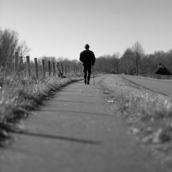 De wandelaar
