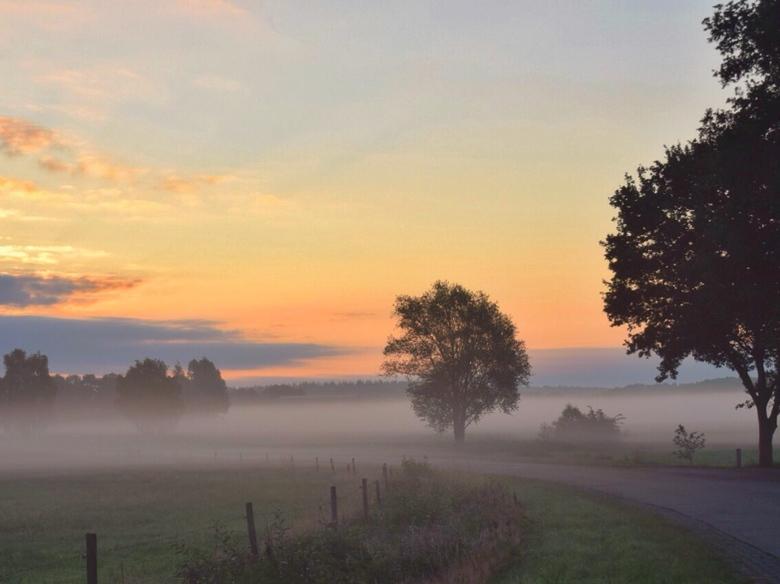 fullsizeoutput_9db - vroeg ochtendlicht