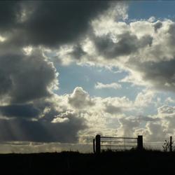 """""""Het hek is van de dam"""""""