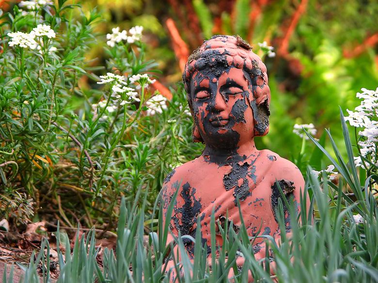 New skin for Buddha II - De eerste versie vondt ik achteraf toch niet zo geslaagd, dus poging twee. Na een strenge winter krijgt Boeddha een nieuw vel