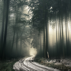 The winter bends