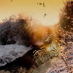 winter slootje (2)