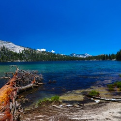 Tenaya Lake in Yosemite NP