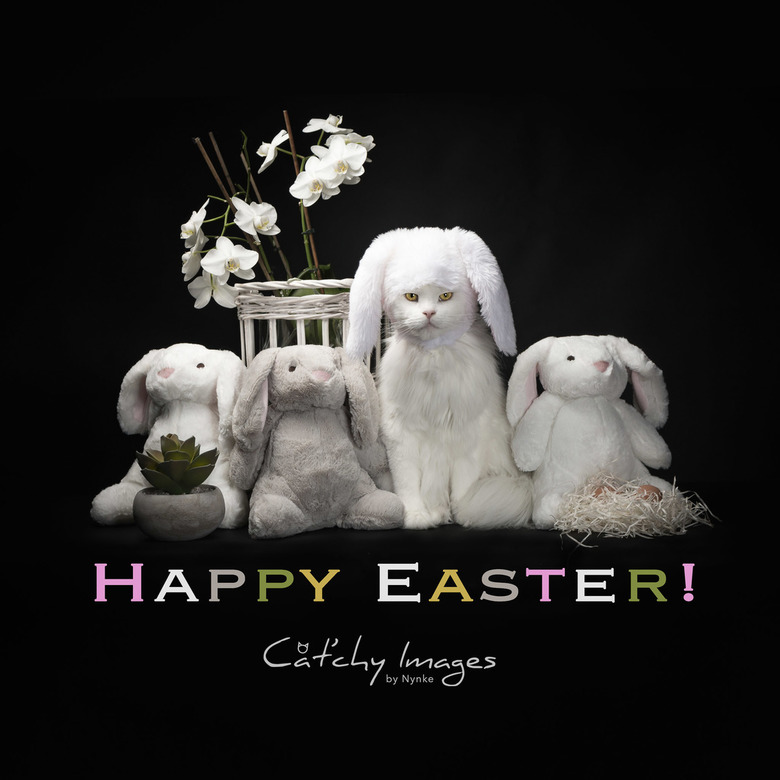 Fijne Pasen allemaal! -