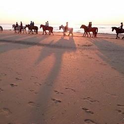 Paardrijden op het strand