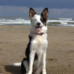 Jaily haar eerste keer op het strand