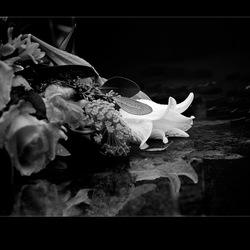 Met bloemen (2)