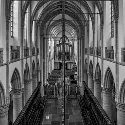 In en om de Grote Kerk (Dordrecht)