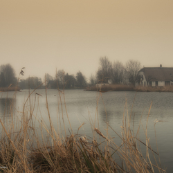 Een dag met mist .....