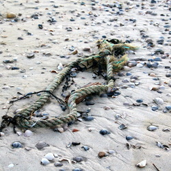 Sporen in het zand -5-