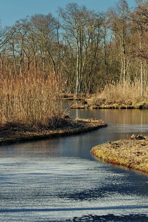 landschap. - Natuurgebied tussen Kortenhoef en Ankeveen<br /> <br /> 21 januari 2017.<br /> Groetjes Bob.