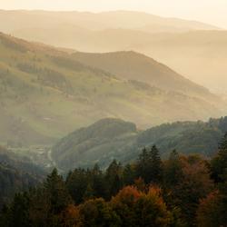 Herfst in het Zwarte Woud