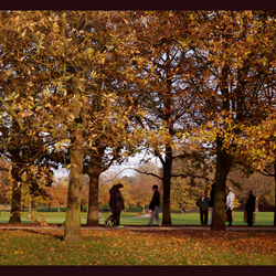 Autum walk in Greenwich Park