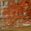 Herfst-Huis Zypendaal