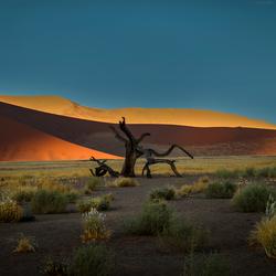 Sossusvlei in Namibië
