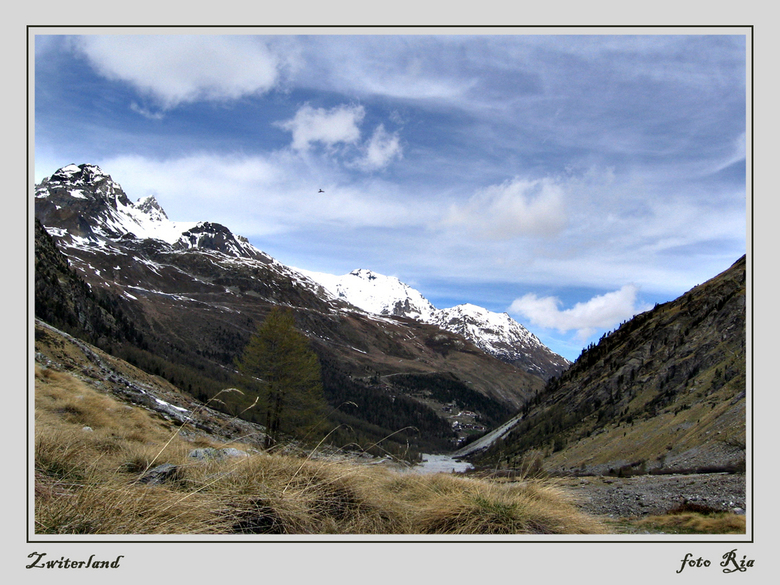 Zwitserland - Als we hier geen winter hebben gaan we gewoon even -visueel- naar Zwitserland.