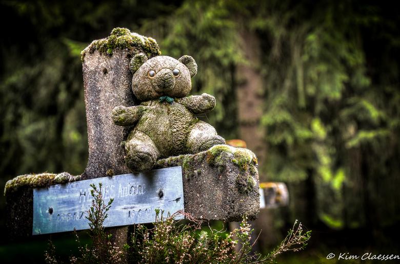 Eenzaam beertje - Vandaag voor het eerst een bezoekje gebracht aan 'Cemetery of the insane'. Dit is een HDR foto, waarbij ik 3 identieke fot