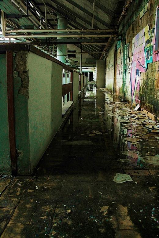 The Abandoned Factory - The Abandoned Factory