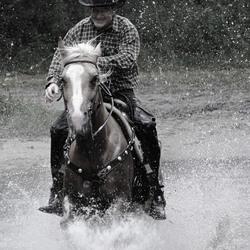 men & quarterhorse 2