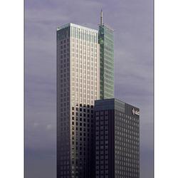 Rotterdam XVI
